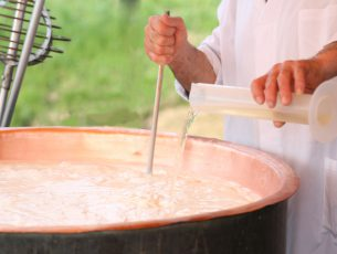 Cheesemaker pours milk rennet in copper pot for making cheese in the dairy